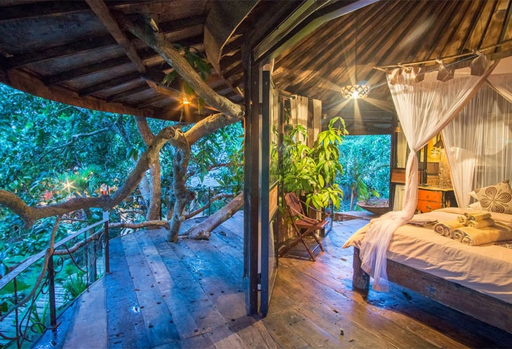 Jungle Spirit Treehouse Experience