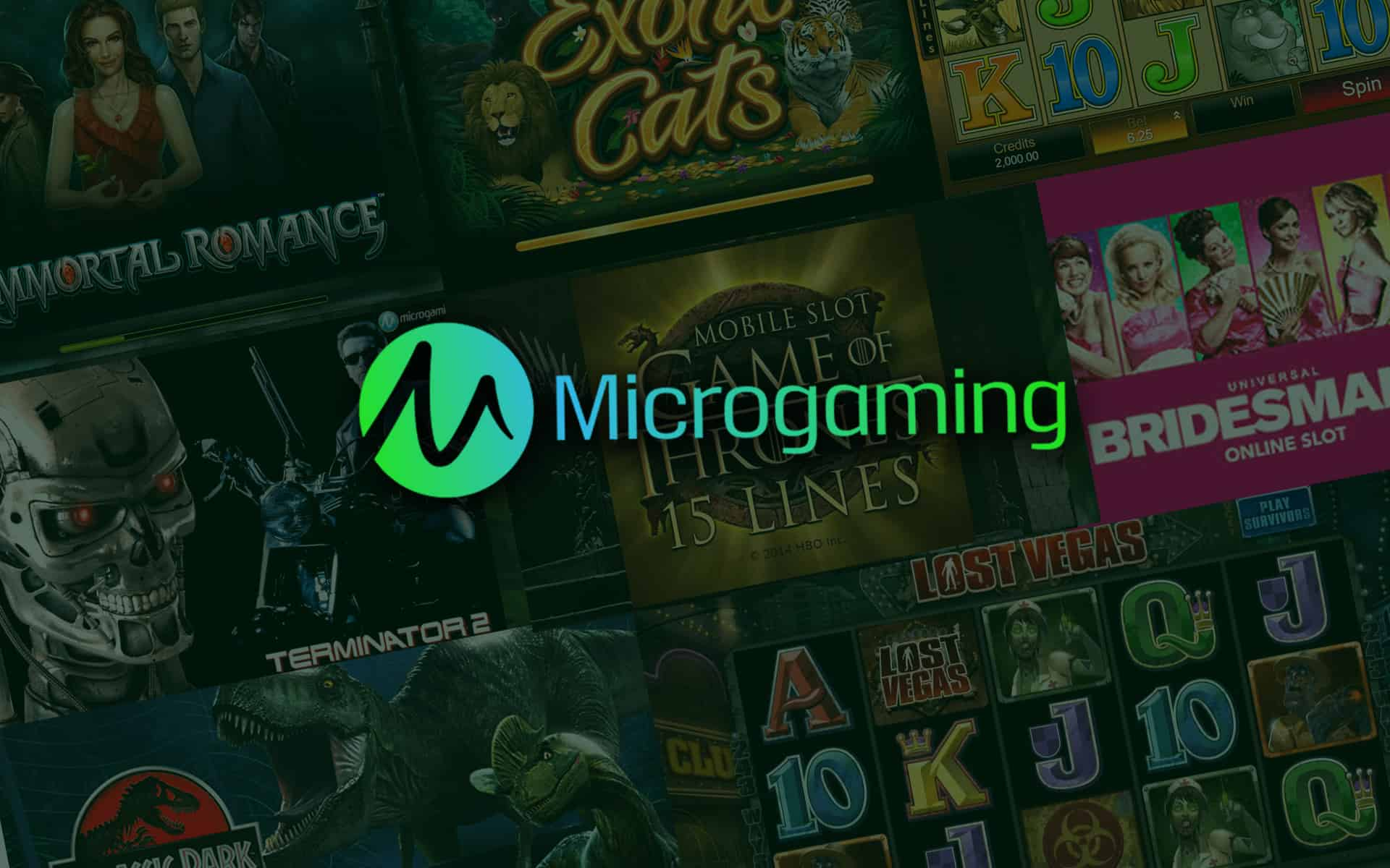 Microgaming Anbieter