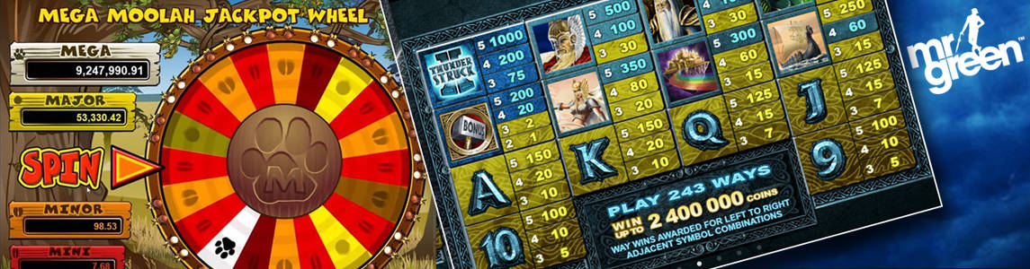microgaming slot features