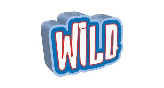 slot wild symbol